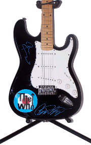 The Who Airbrushed Autographed Guitar