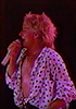 rod stewart stage worn shirt